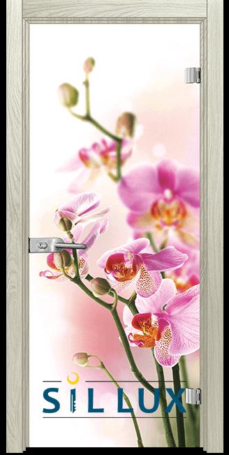 Стъклена интериорна врата Print G 13 2 I