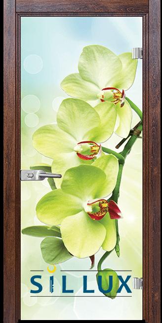 Стъклена интериорна врата Print G 13 3 Green Q