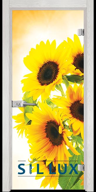 Стъклена интериорна врата Print G 13 4 F