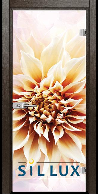 Стъклена интериорна врата Print G 13 5 K